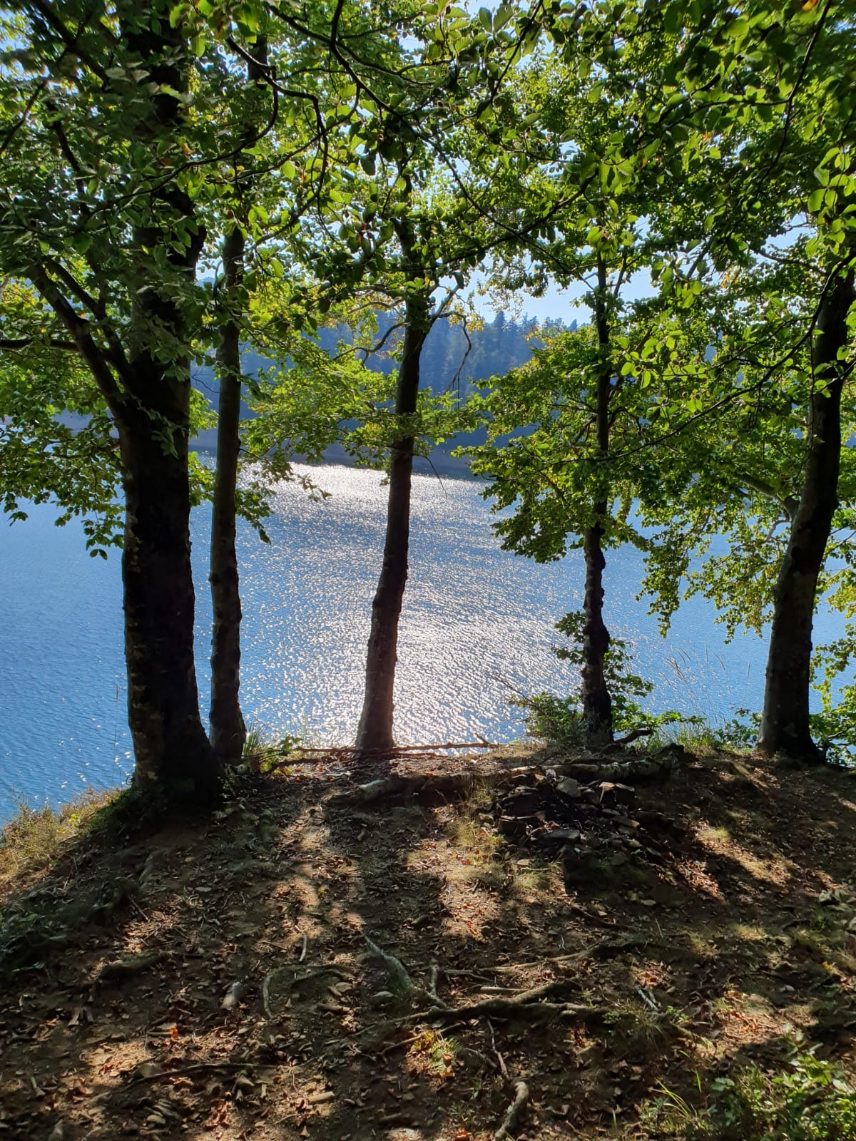 Radna akcija čišćenja šetnice oko Lokvarskog jezera